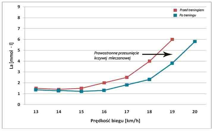 Lactate threshold training | Bodyrelax